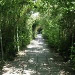Livadia-park