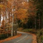 Crimean road