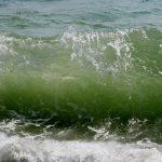 Почему море солёное?