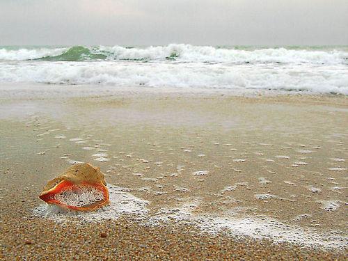 амулет Афродиты  на морском песке