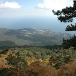 Почему хорошо отдыхать в Крыму?