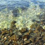 сокровища Чёрного моря