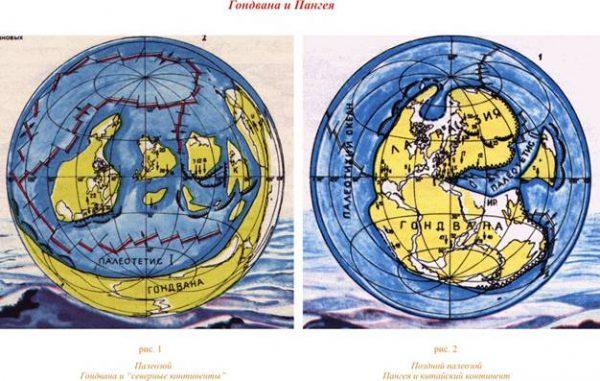 Пангея раскололась на Гондвану и северный континент Лавразию