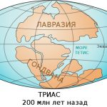 Существовал ли океан Тетис?