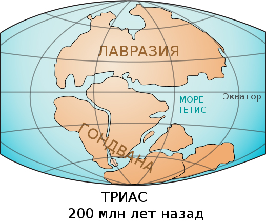 Laurasia-Gondwana-Тетис разделяет Пангею на 2континента — Лавразию и Гондвану