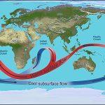 Как изучался Мировой океан?
