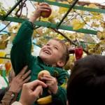 радость сбора урожая