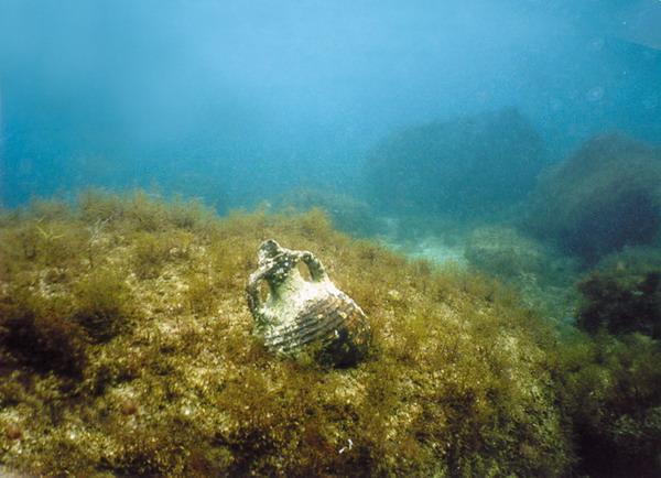 Тарханкут под водой