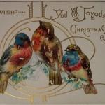 NY-  птицы счастья