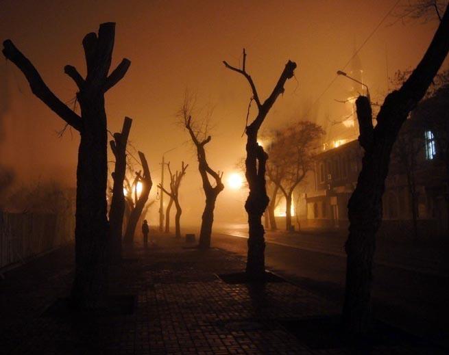 Обрезка деревьев в Евпатории