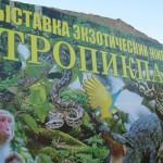 «Тропик-парк» в Евпатории.