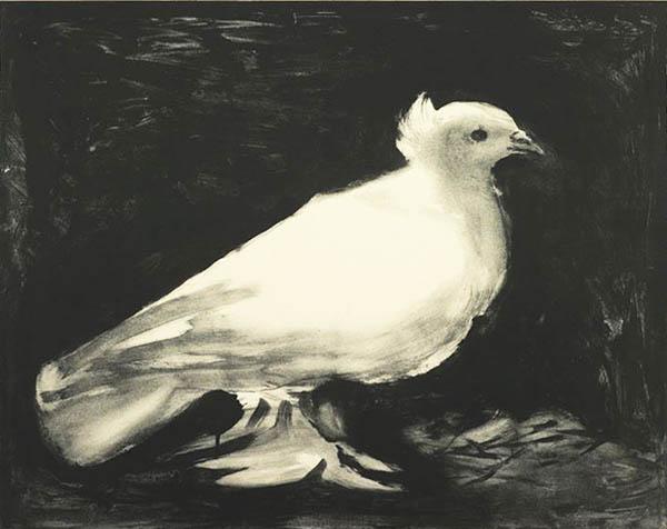 Pablo-Picasso_La-colombe-1949