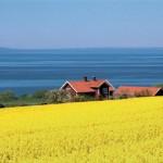Отдых на северной окраине Европы