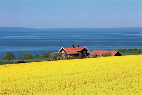 switherland