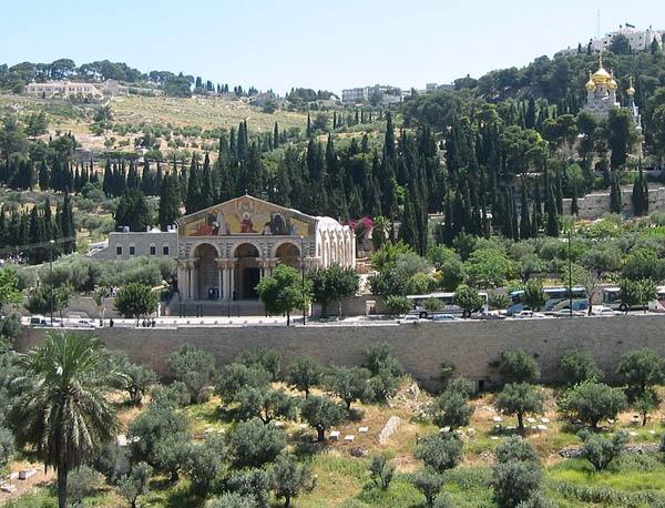 Гефсиманский сад и церковь всех наций