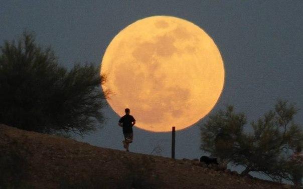 В каких странах, где можно увидеть РЕАЛЬНО большую луну на полнеба