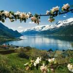 Норвегия: о фьордах, викингах и северном сиянии…
