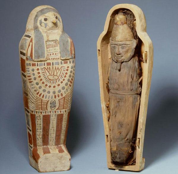 ЗЕРНО-мумия-