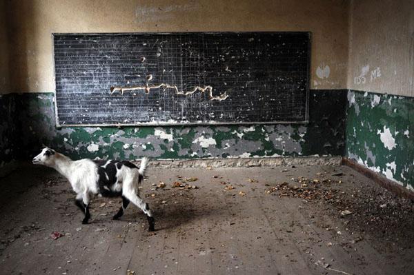 класс в селе Войница- Север-беднейший р-н ЕС