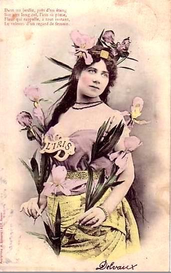iris.Ирис - символ Франции, твоя дружба