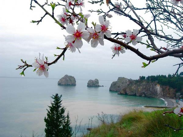 крым весна
