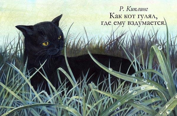 1-кот гулял