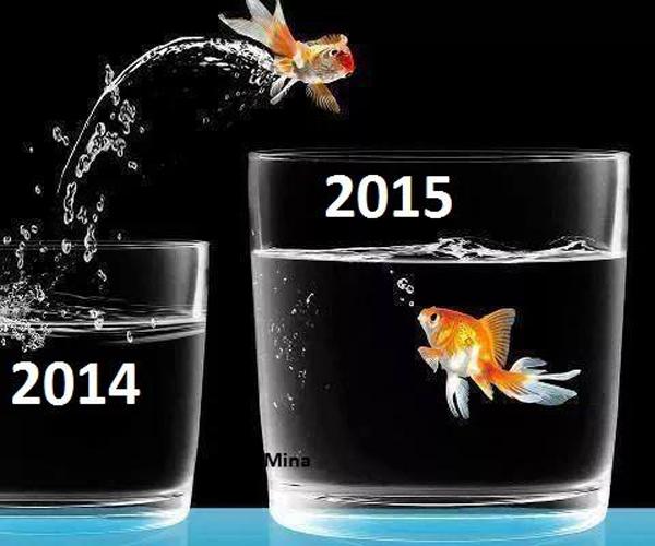 2015 золотая рыбка