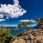 Кто в Крыму может получить землю бесплатно?
