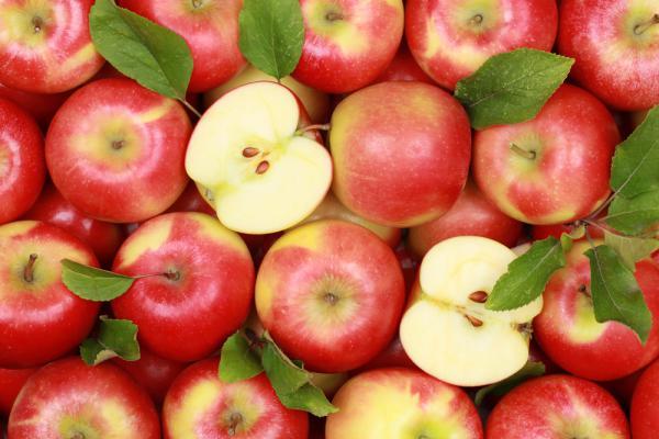 1-яблок и