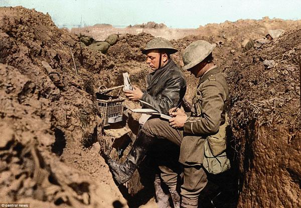 1917-2. Голубиная почта