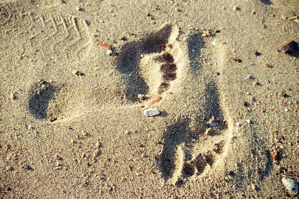 пляж-песок-след