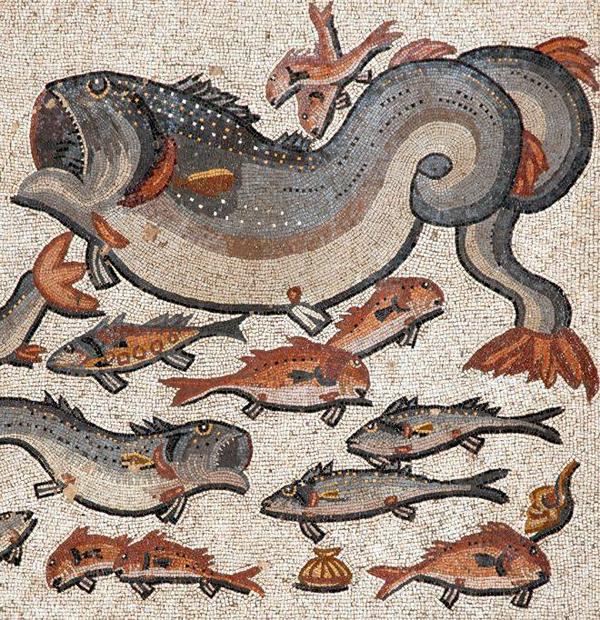 помпеи-рыбы