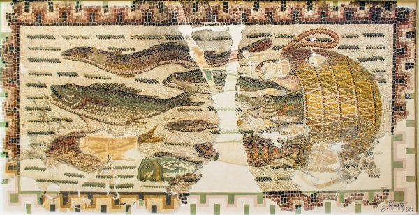 рыбы4