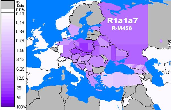 1-распределения R1a1a7 (R-M458