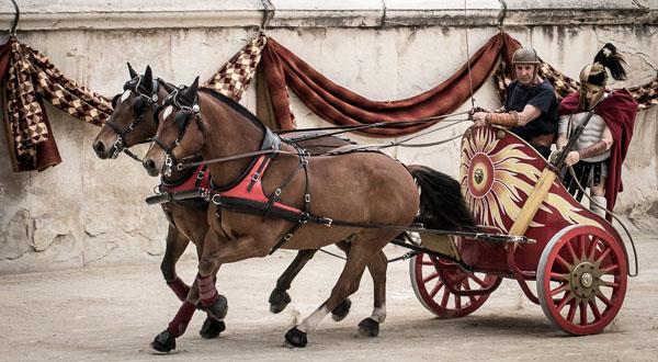 1-реконстр-колесница-77_o
