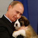 Фотовыставка «Неформальный Путин» в Евпатории