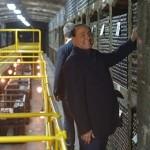 Владимир Путин и Берлускони побывали в «Массандре»