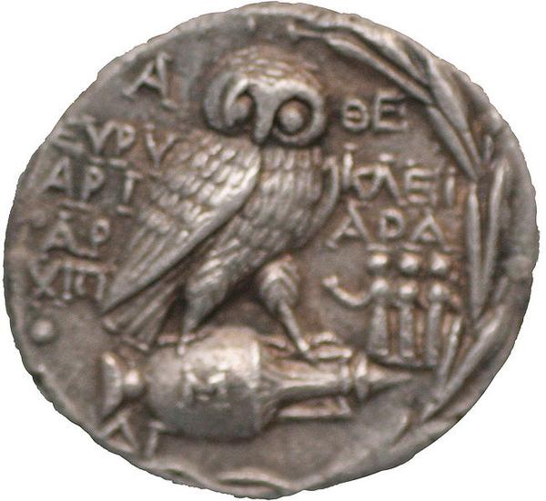 апи-афина-сова