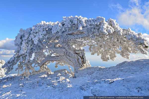 айпетри- в снегу