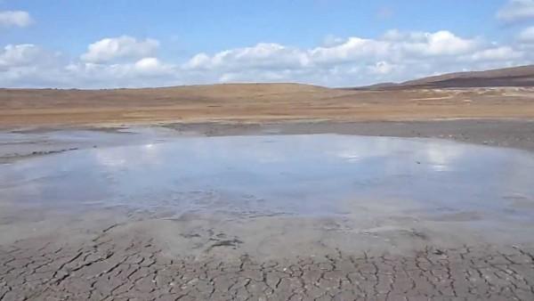 грязевый-вult