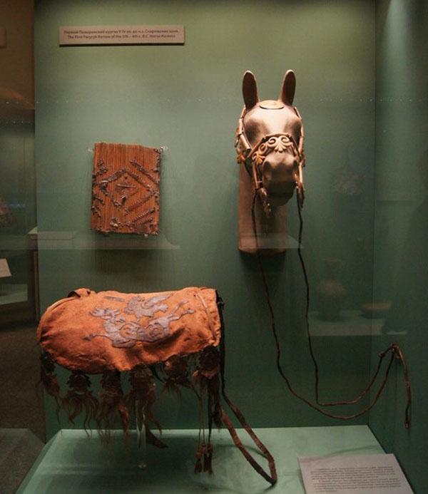конь-пазырык--8