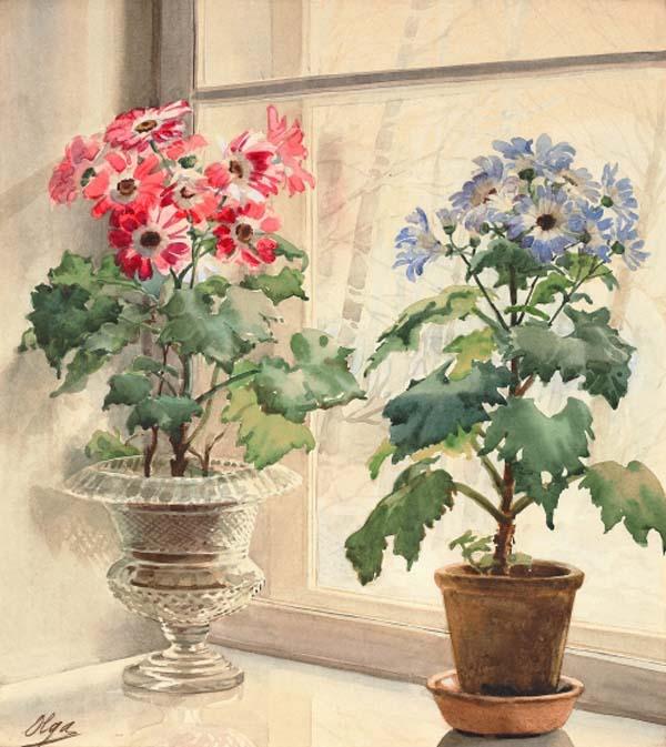 cvety-na-okne