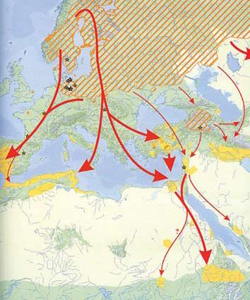 migraciya-zhuravlej