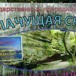 Распоряжение о бесплатном проходе к водопадам и природным заказникам Крыма