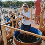 Фестиваль молодого вина в «Золотой Балке»