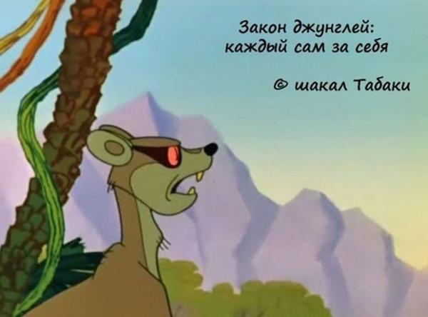 00-джунгли