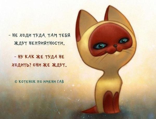 00-котёнок-гав