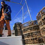 Как устроена устричная ферма на заливе Донузлав