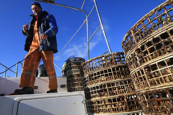 CRIMEA, RUSSIA - NOVEMBER 12, 2016: Placing an oyster cage underwater at an oyster and mussel farm on Lake Donuzlav. Alexei Pavlishak/TASS Ðîññèÿ. Êðûì. 12 íîÿáðÿ 2016. Âî âðåìÿ âûñàäêè óñòðèö íà äîðàùèâàíèå íà ôåðìå ïî âûðàùèâàíèþ óñòðèö è ìèäèé íà îçåðå Äîíóçëàâ ó ïîñåëêà Íîâîîçåðíîå. Àëåêñåé Ïàâëèøàê/ÒÀÑÑ