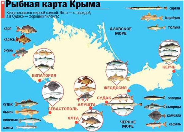 00-рыба